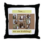 Yes, We Are Kidding Throw Pillow
