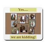 Yes, We Are Kidding Mousepad