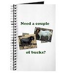 Need A Couple of Bucks Journal