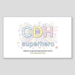 CDH Superhero Sticker (Rectangle)