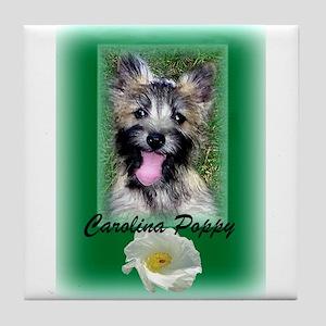 Carolina Poppy Cairn Terrier Tile Coaster