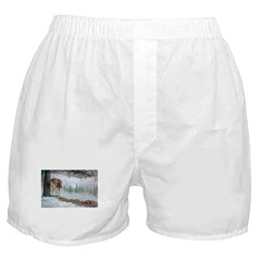 Animal Boxer Shorts
