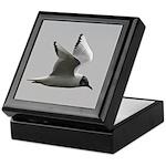 Black-headed Gull Keepsake Box