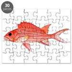 Hawaiian Squirrelfish Puzzle
