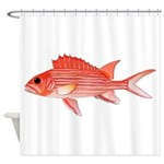 Hawaiian Squirrelfish Shower Curtain