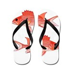 Hawaiian Squirrelfish Flip Flops