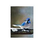 Blue Jay 5'x7'Area Rug