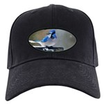 Blue Jay Black Cap with Patch