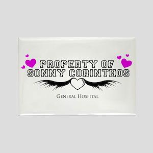 Property of Sonny GH Rectangle Magnet
