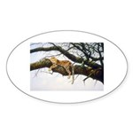 Animal Sticker (Oval 10 pk)