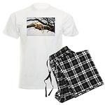 Animal Men's Light Pajamas