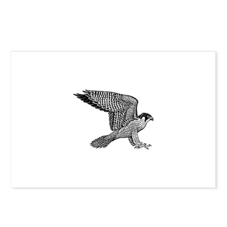 falcon (black) Postcards (Package of 8)
