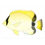 Reef Butterflyfish 5x7 Flat Cards (Set of 20)