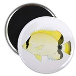 Reef Butterflyfish Magnets