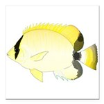 Reef Butterflyfish Square Car Magnet 3