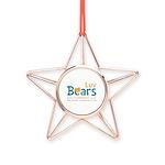 Luv Bears Edutainment Copper Star Ornament