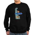 ILY Delaware Sweatshirt (dark)