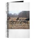 Hagan's Horses Journal
