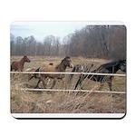 Hagan's Horses Mousepad