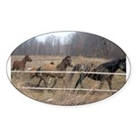 Hagan's Horses Oval Sticker
