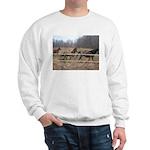 Hagan's Horses Sweatshirt