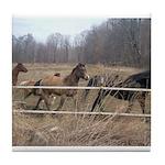 Hagan's Horses Tile Coaster