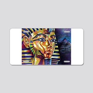 Best Seller Egyptian Aluminum License Plate