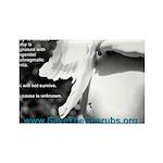 Oz Kidd-Ward poster #2 Rectangle Magnet (100 pack)