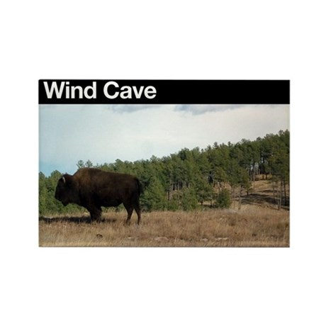 Wind Cave NP Rectangle Magnet