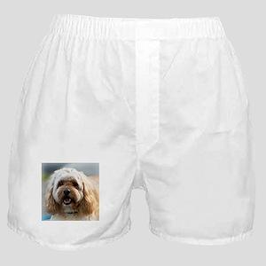 Dee Jay's Boxer Shorts