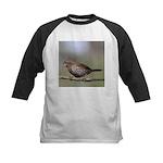 Fox Sparrow Baseball Jersey