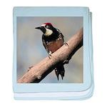 Acorn Woodpecker Baby Blanket