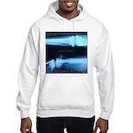 Motorcycle awareness x-ray Hooded Sweatshirt
