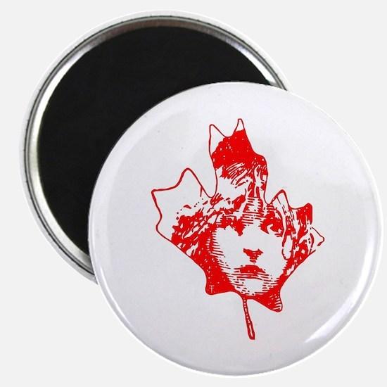 Cosette Canada Magnet