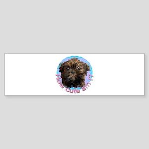 Brussels Griffon (Long Hair) Bumper Sticker