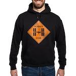 ISS / Science Zone Hoodie (dark)