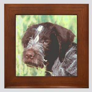 German Wirehaired Pointer Framed Tile