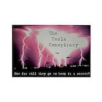 Tesla Conspiracy Rectangle Magnet (10 pack)