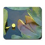 Spatterdock Splendor - Mousepad