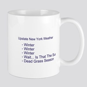 Upstate NY Weather Mug