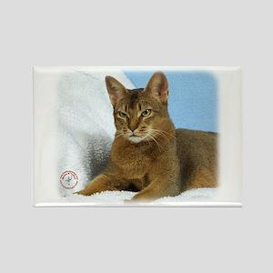 Abyssinian Cat 9Y009D-020 Rectangle Magnet