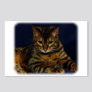 Bengal Cat 9W080D-128 Postcards (Package of 8)