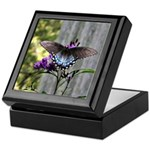 Spicebush Swallowtail Keepsake Box
