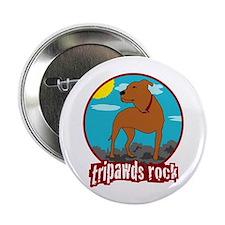 Tripawds Rock (Trouble) 2.25