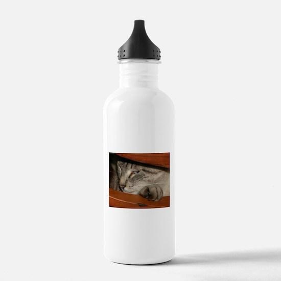 Buddha Cat Meeohm Water Bottle