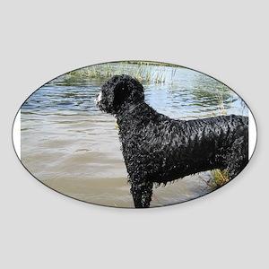 Portuguese Water Dog Sticker (Oval)