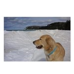 Dog + Whaleback Postcards (Package of 8)