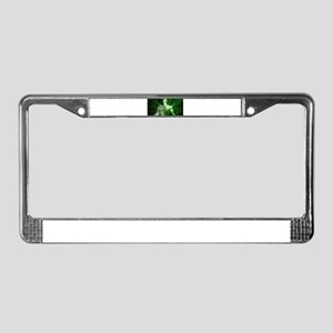 DNA Sequencing License Plate Frame