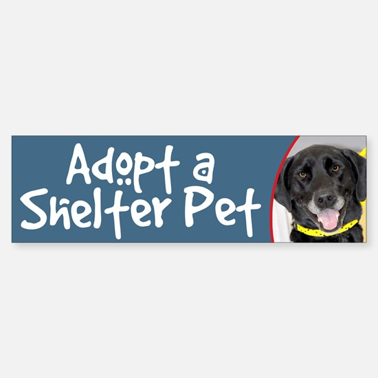 Adopt a Shelter Pet Black Lab Bumper Bumper Bumper Sticker