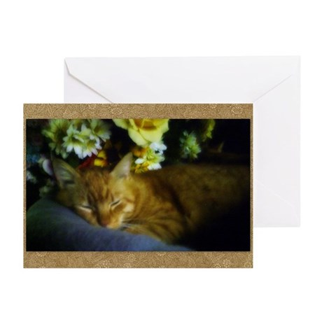 Sleeping Kitty Greeting Cards (Pk of 10)
